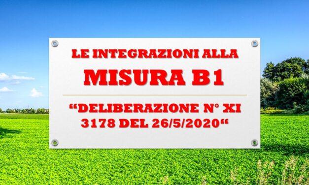 MISURA B1 – LE INTEGRAZIONI